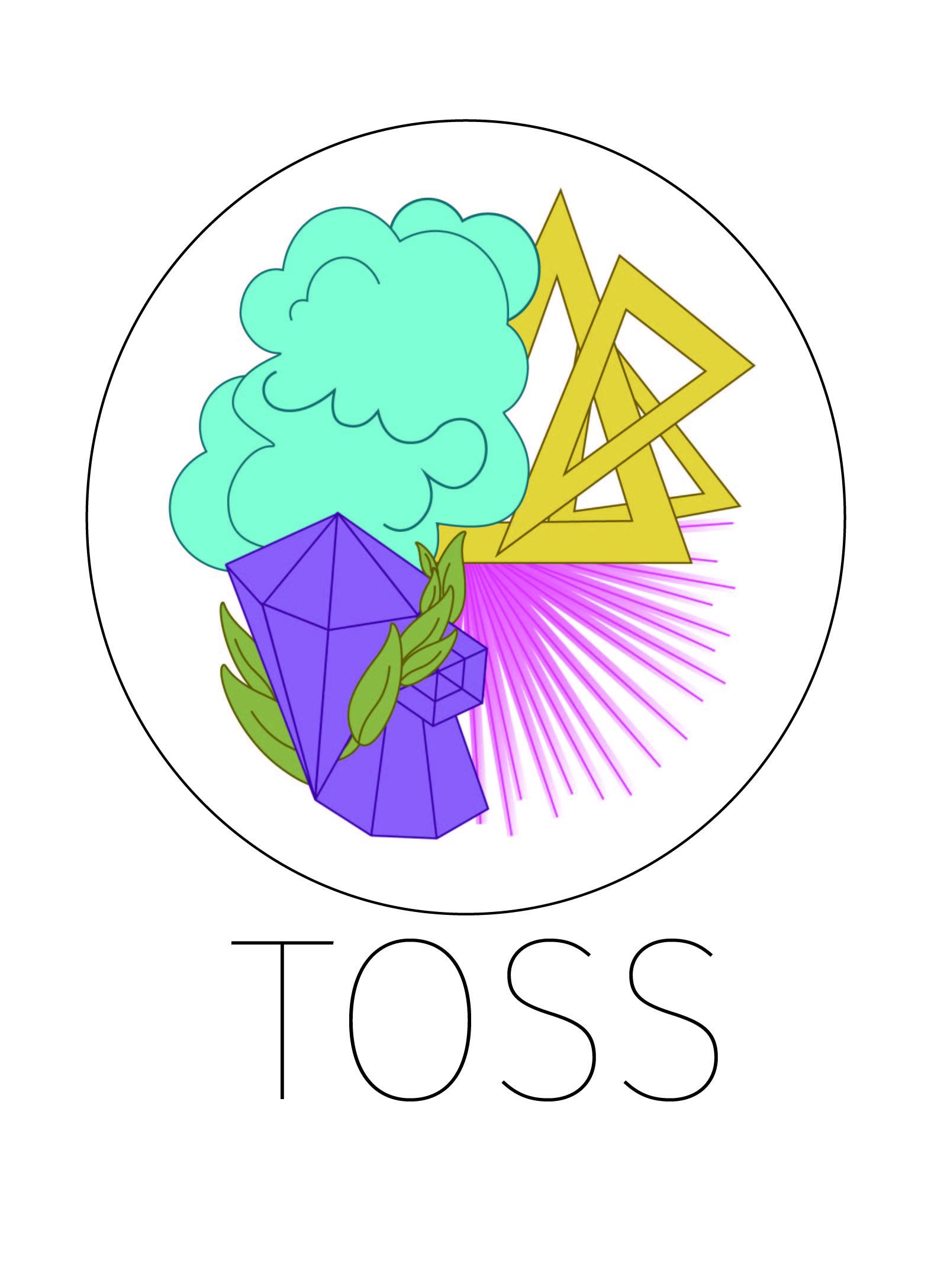 TOSS_2017.jpg
