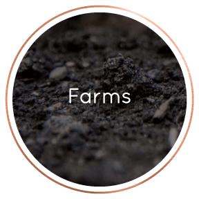 LocalBusinessDirectory-Farms