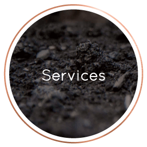 LocalBusinessDirectory-Services