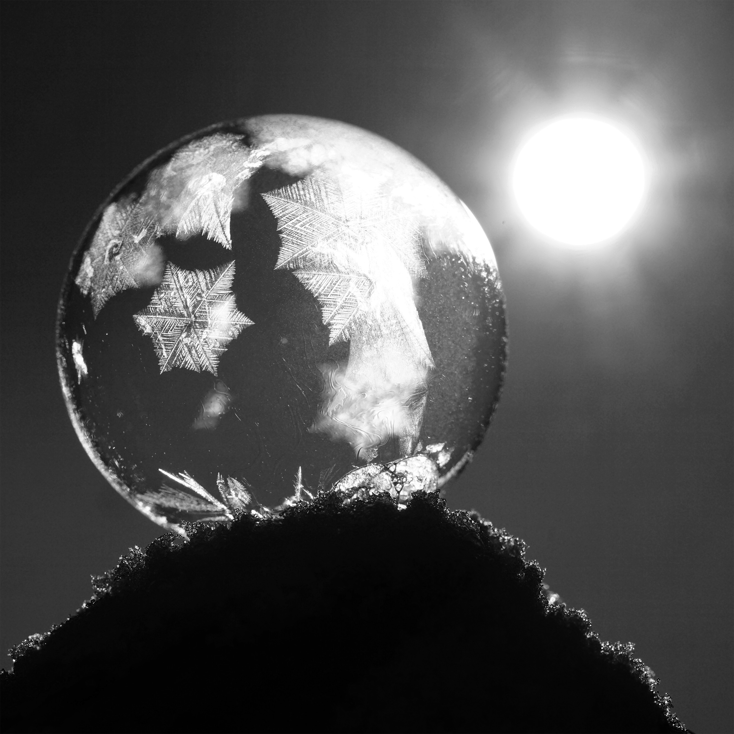 black and white ice sphere in the sun