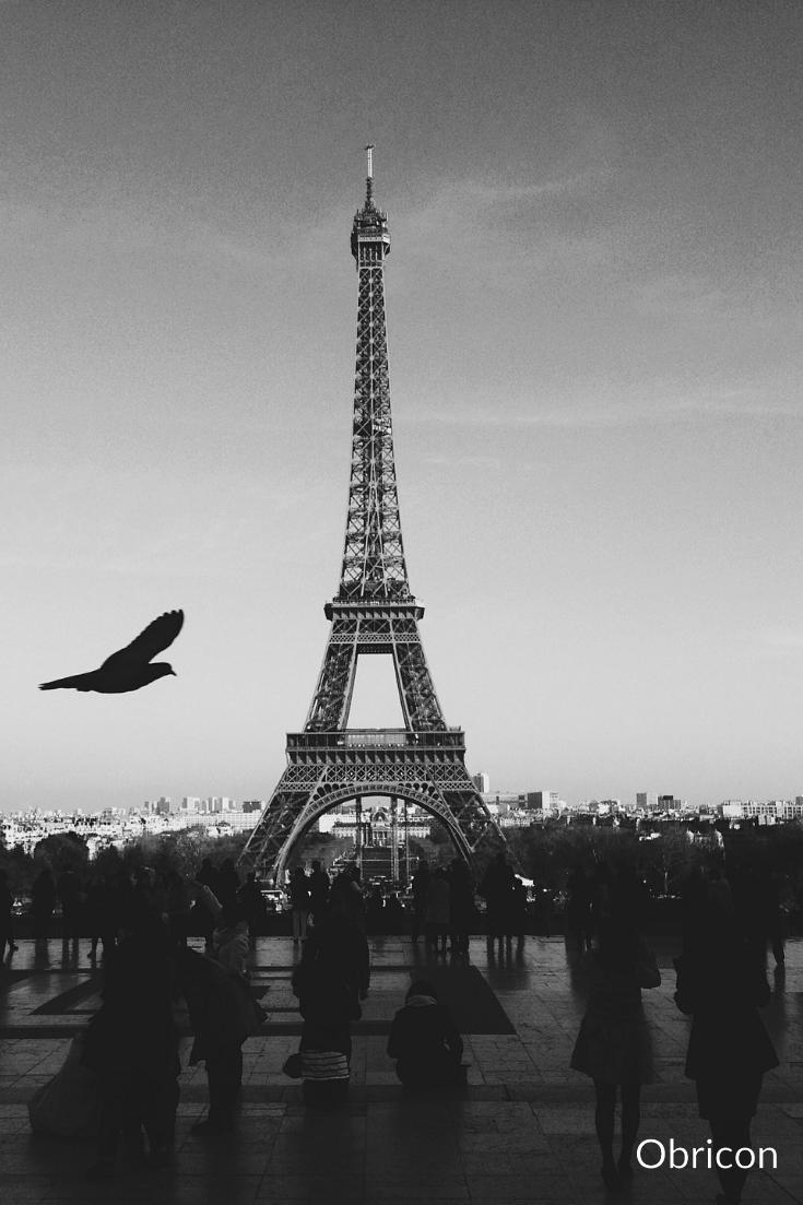 Eiffel Tower skyline.jpg