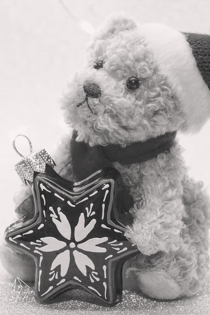 #teddy and #ornament.jpg