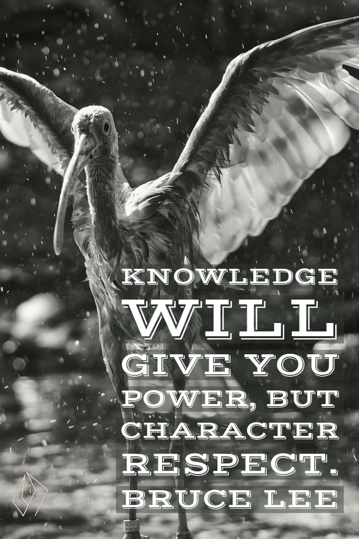 Knowledge will give you power, but character respect.  Bruce Lee.jpg