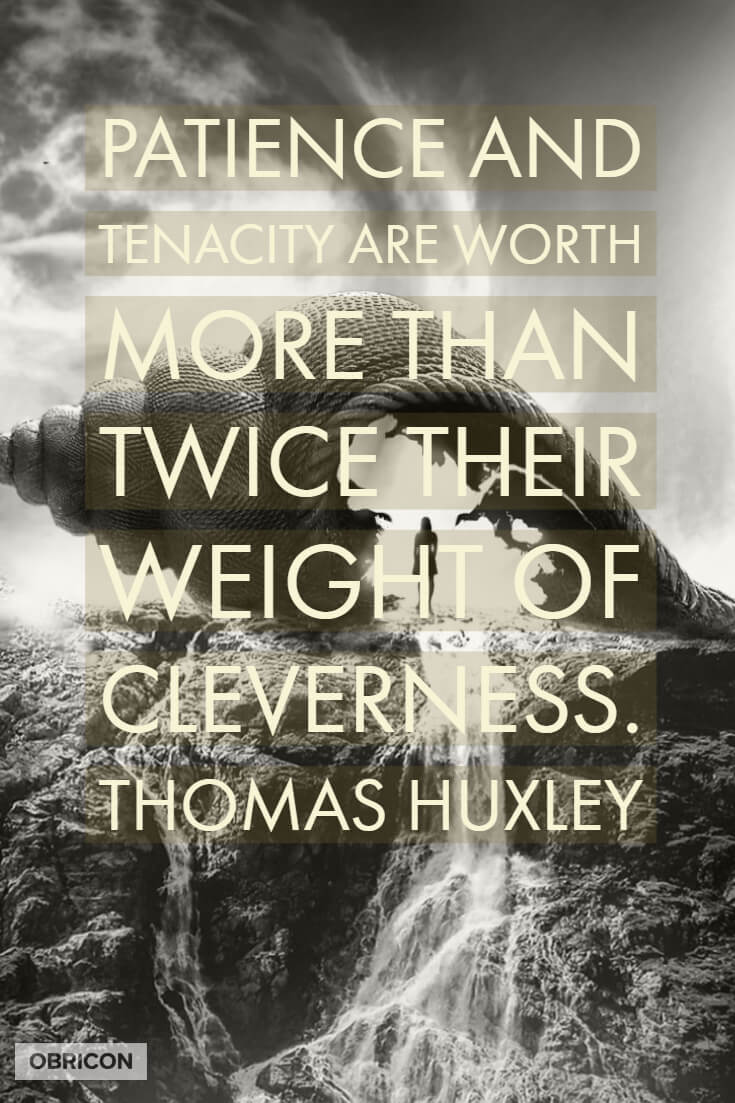 #patience worth twice #cleverness.jpg