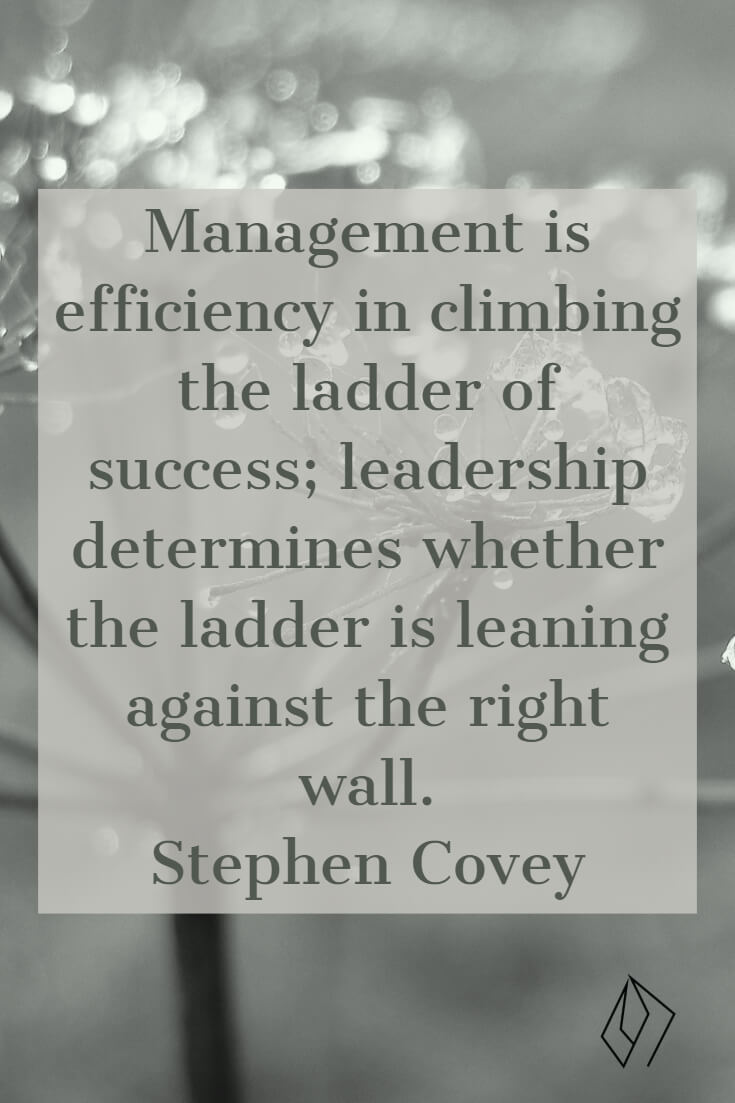 Management is efficiency in climbing the ladder of success; leadership determines whether the ladder is leaning against the right wall. Stephen Covey (2).jpg