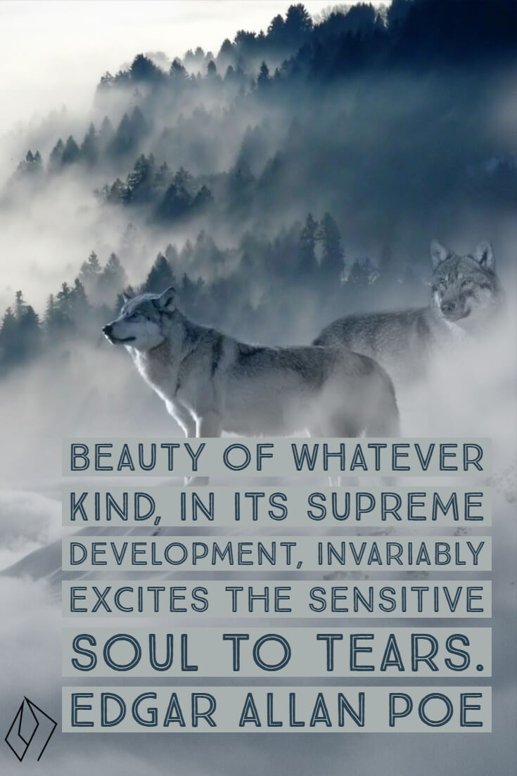 Beauty of whatever kind, in its supreme development, invariably excites the sensitive soul to tears. Edgar Allan Poe.jpg