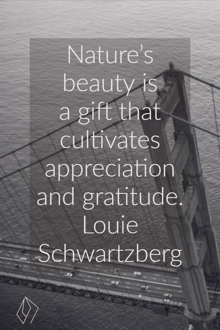 Nature's beauty is a gift that cultivates appreciation and gratitude. Louie Schwartzberg.jpg