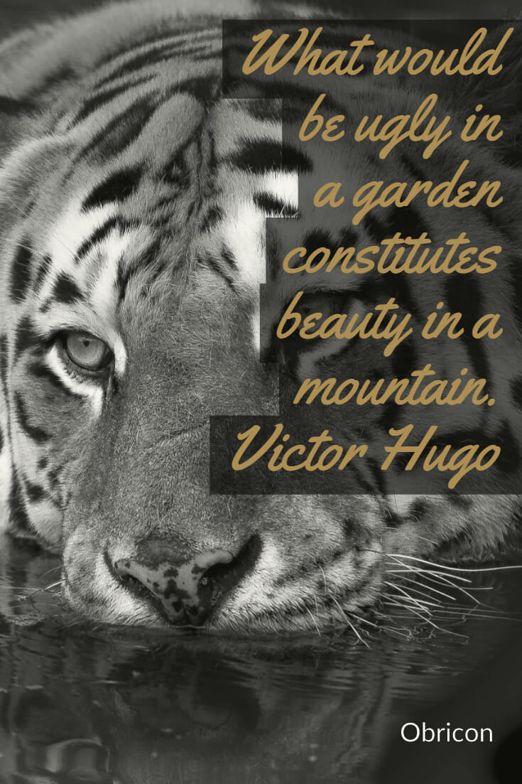 What would be ugly in a garden constitutes beauty in a mountain.  Victor Hugo.jpg