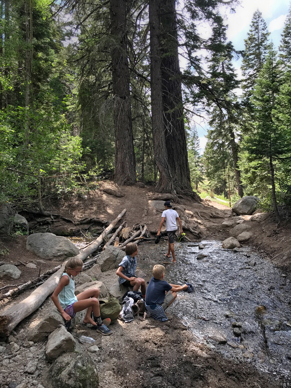 I want to remember this moment forever!  This was about mile 12 of an 18 mile hike we had done with these four kids.  They've been hiking long distances for a few years now, but this was the longest we took them.  Two of the miles were water and marsh, all through a field in the high-elevation sun.  Here they are taking a break, washing their feet and putting back on their wet and muddy shoes.  Troopers. They inspire me!