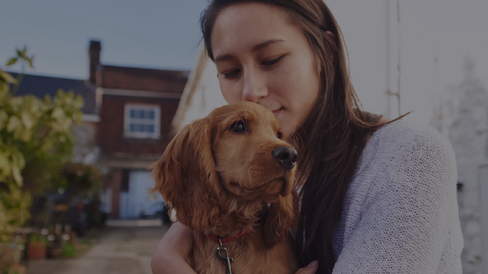 PetConnect - Find your best friend