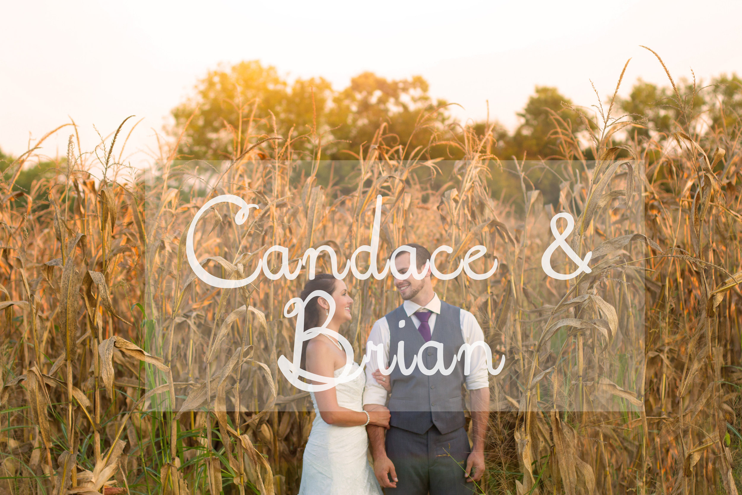 Candace and  Brian Wedding - Chelsea Meadows Photography (92).jpg