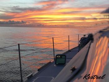Kestrel -sunset.jpg