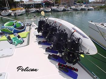 Pelican dive gear.jpg