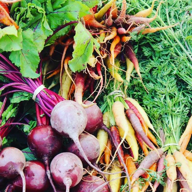 Fresh Organic Nutrition