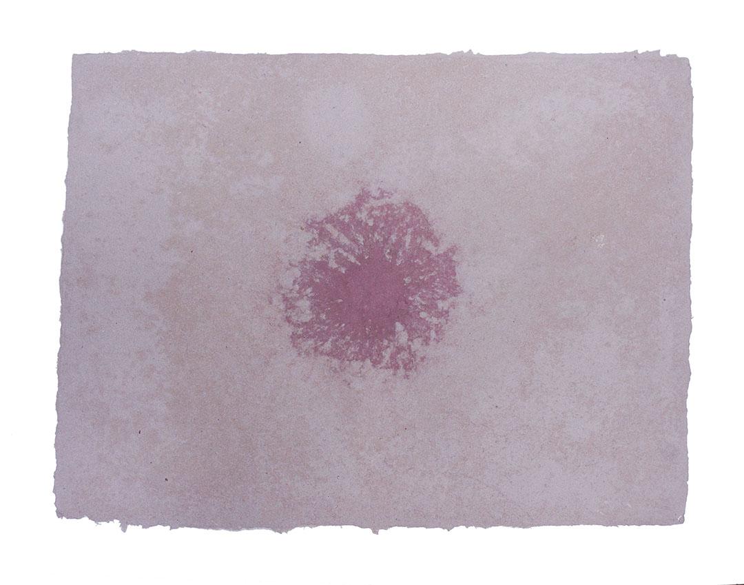 Ape_Bleakney_Morgan_Papermaking_2019_Grandpa Flannel Paper 21Bx.jpg