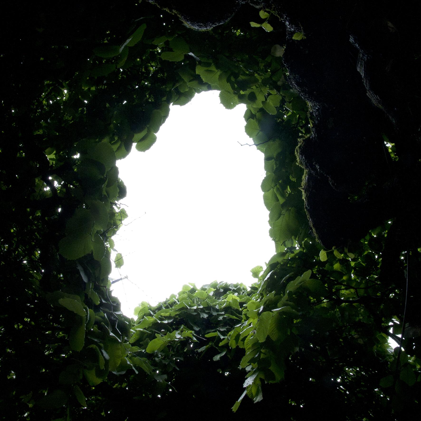 Maelle Collin_Hole_WEB.jpg