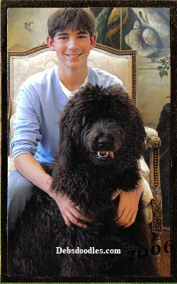 Tyler and his best friend Riley the Giant Schnoodle