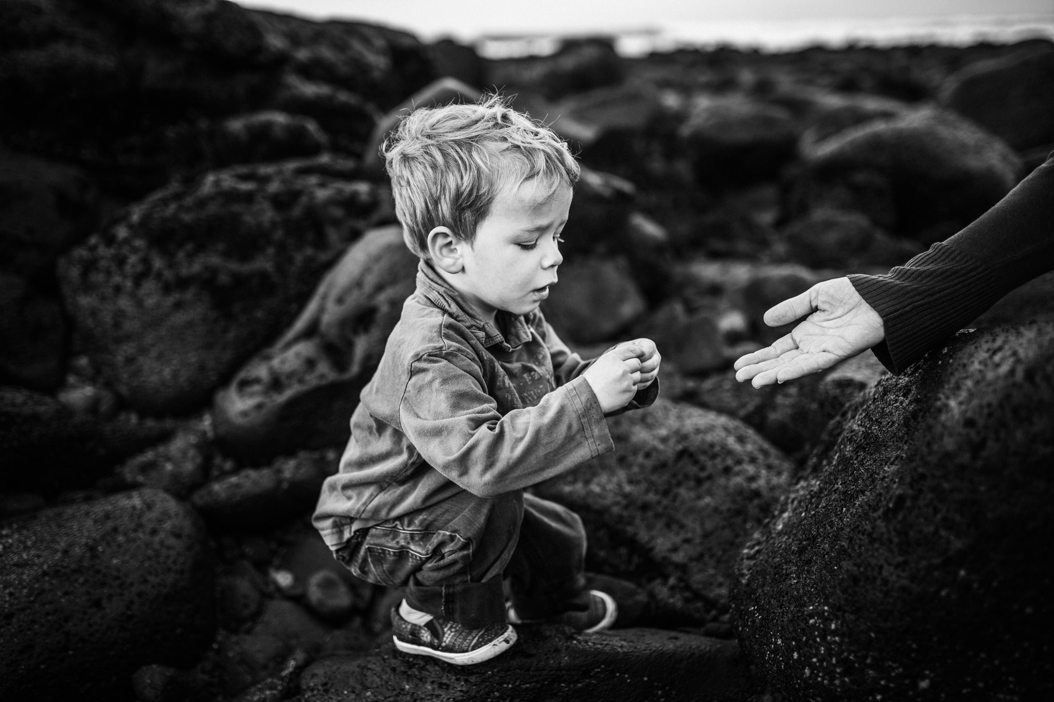 toddler boy studying shell on beach (1 of 1).jpg