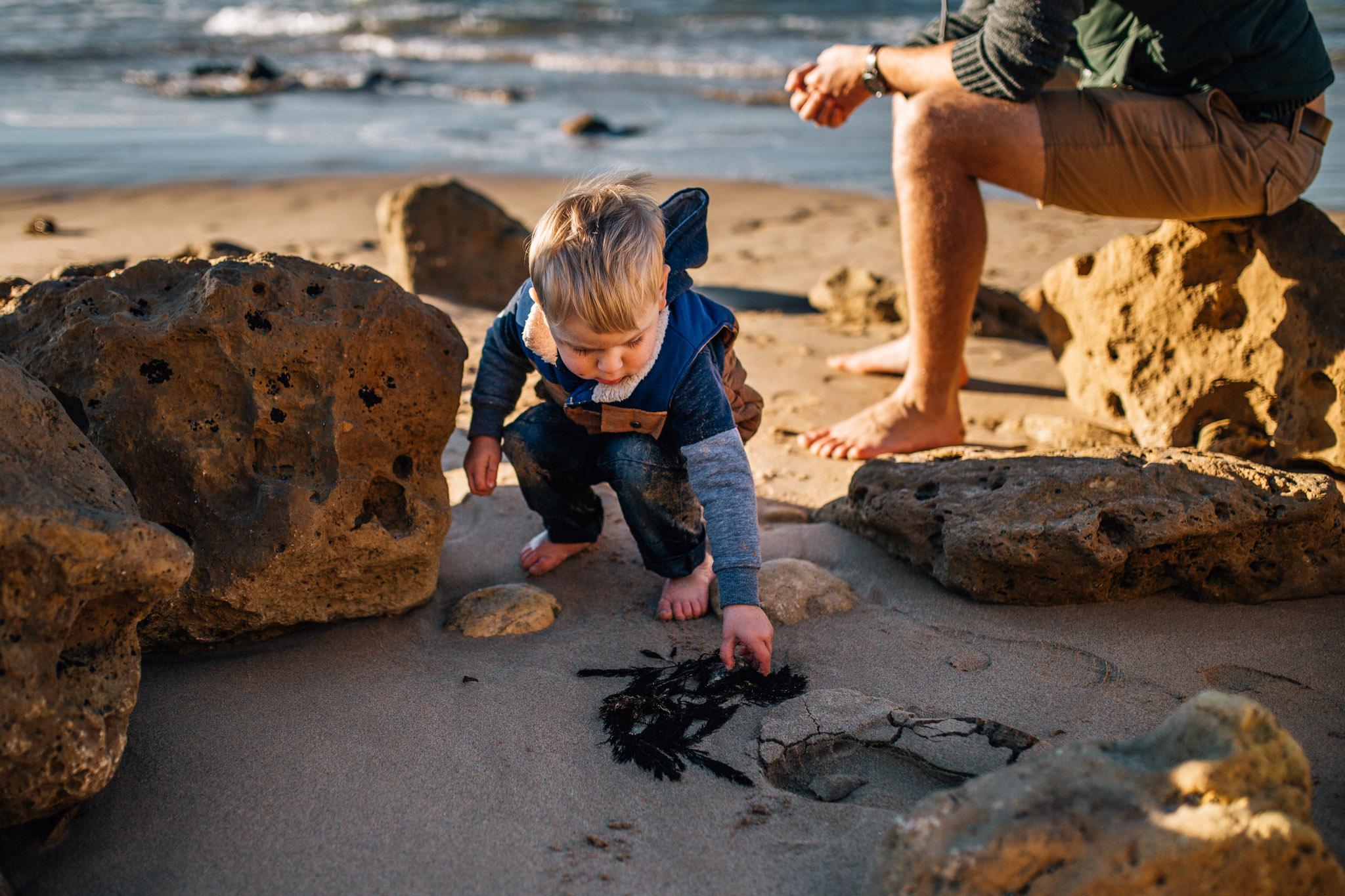 toddler boy picking up seaweed (1 of 1).jpg
