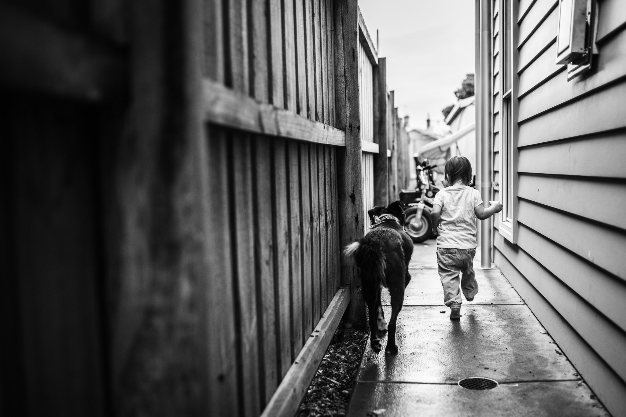 little-girl-and-dog-wandering-down-side-of-house-together-BW (1 of 1).jpg