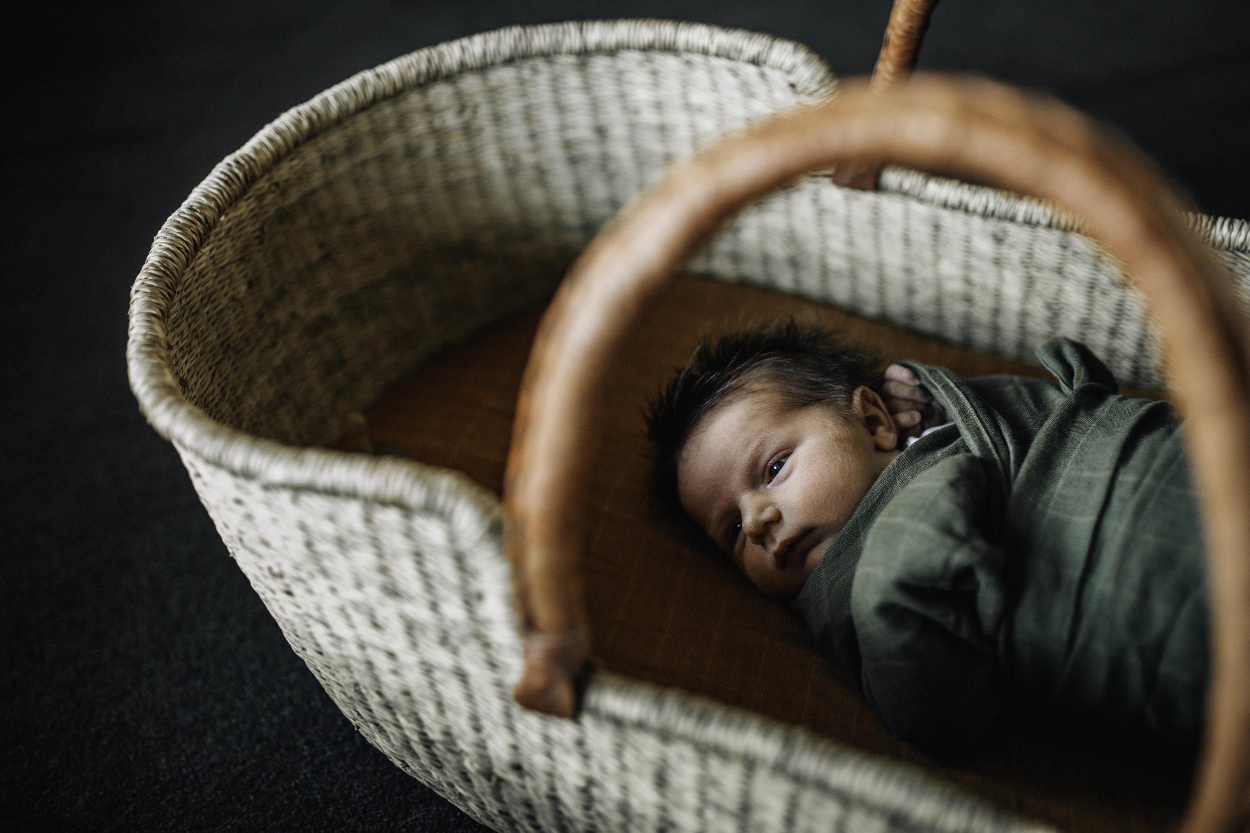 baby-in-basket-I.jpg