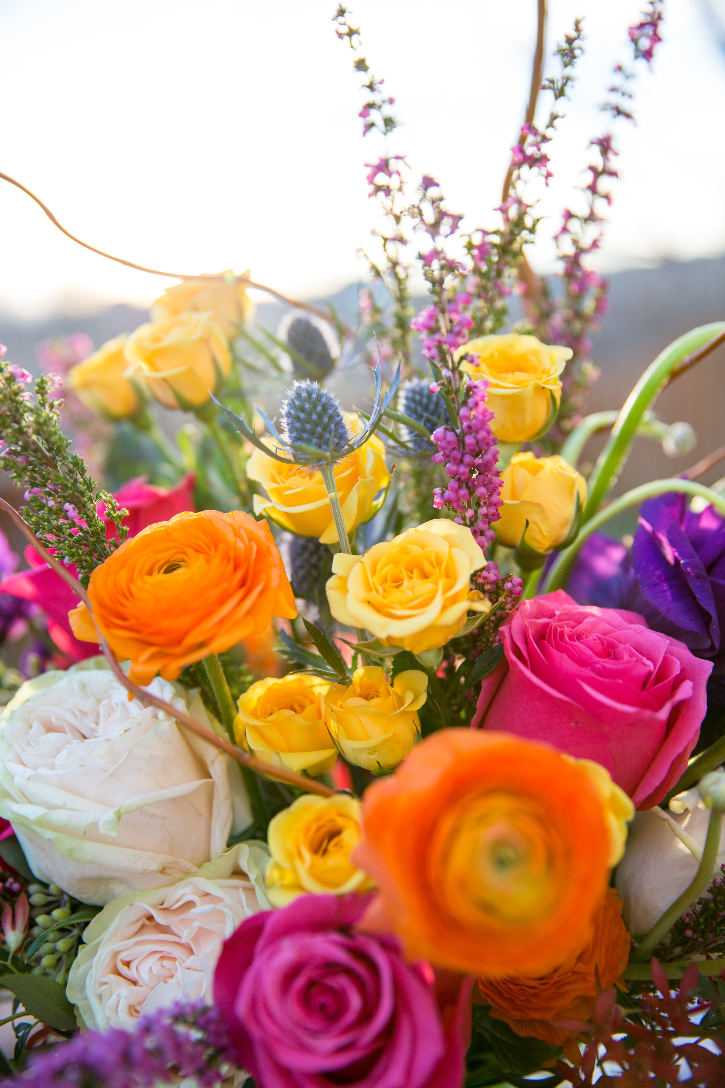 Flower Tribe High Res-3109 Mountain backdrop.jpg