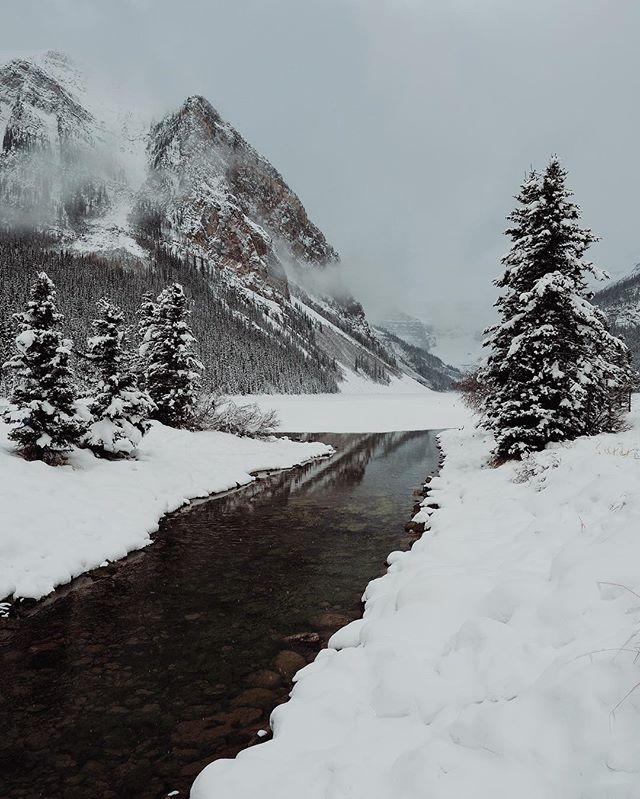 No crowds at Lake Louise👌🏼 . . #banff#lakelouise#canada#park#mountains#lakes#winter#getoutside#explore#greatoutdoors#wander#wanderlust#destinations#naturephotography#landscape#landscapephotography#snow