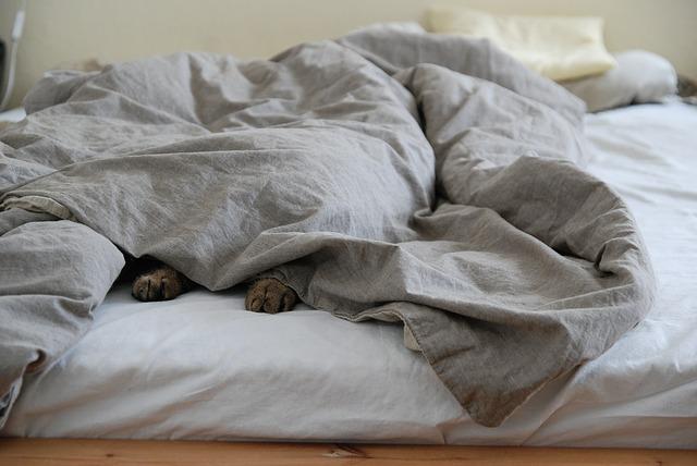 ADHD och trötthet - Varför är det så svårt att kliva upp på morgonen?