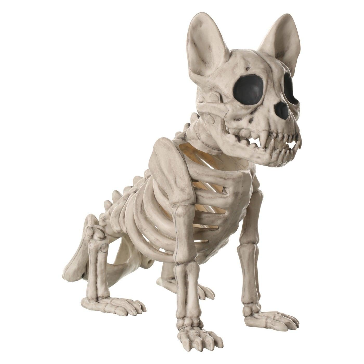 Halloween French Bulldog Skeleton