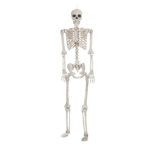 Lifesize Posable Halloween Skeleton