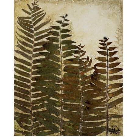 Patricia Pinto Plant Print Ferns