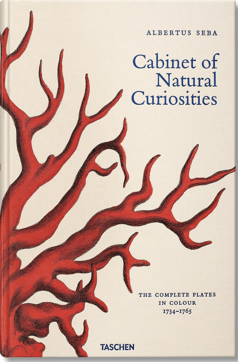 XXL Albertus Seba. Cabinet of Natural Curiosities
