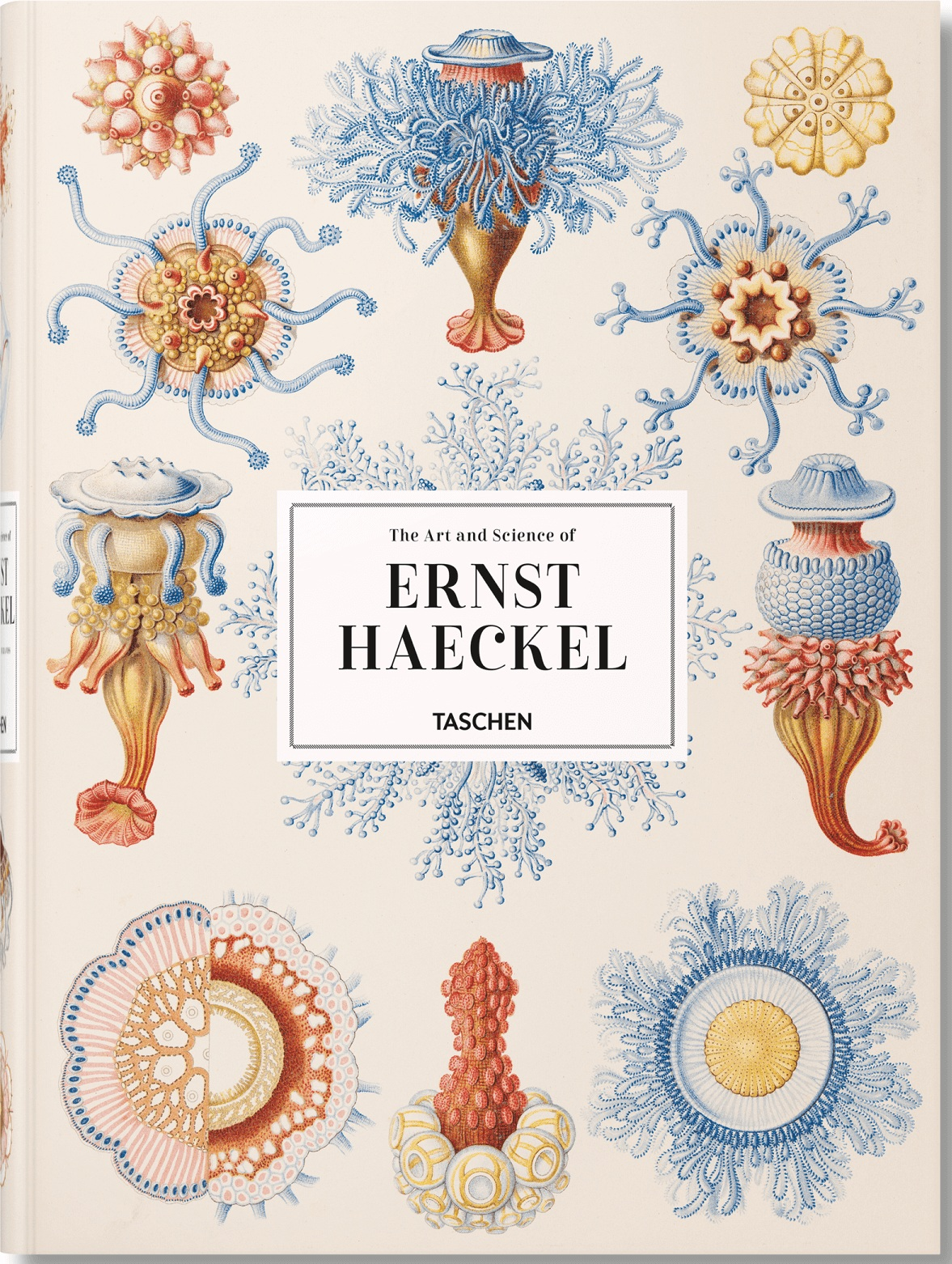 XXL The Art and Science of Ernst Haeckel
