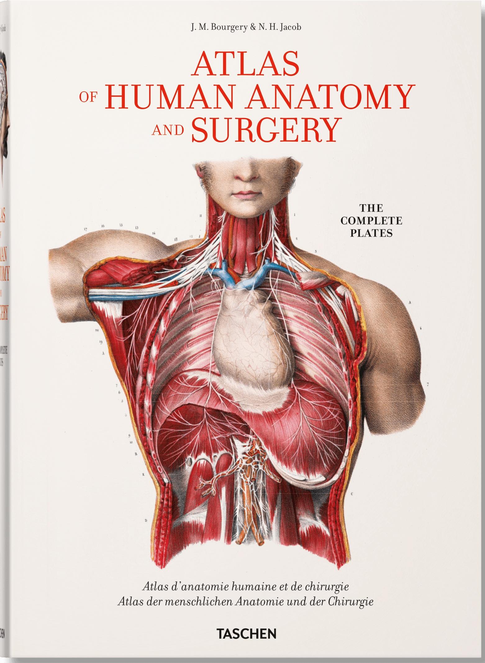 XL Bourgery. Atlas of Human Anatomy and Surgery