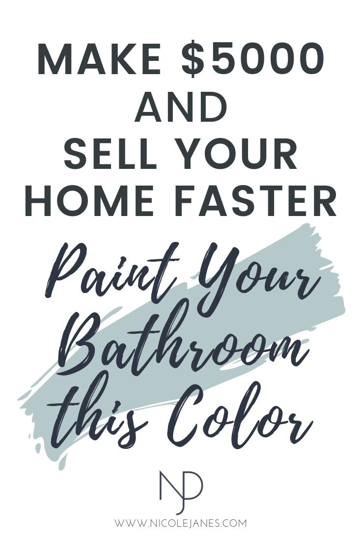 Benjamin Moore Bathroom Powder Room Blue Paint Color Nicole Janes Design.png
