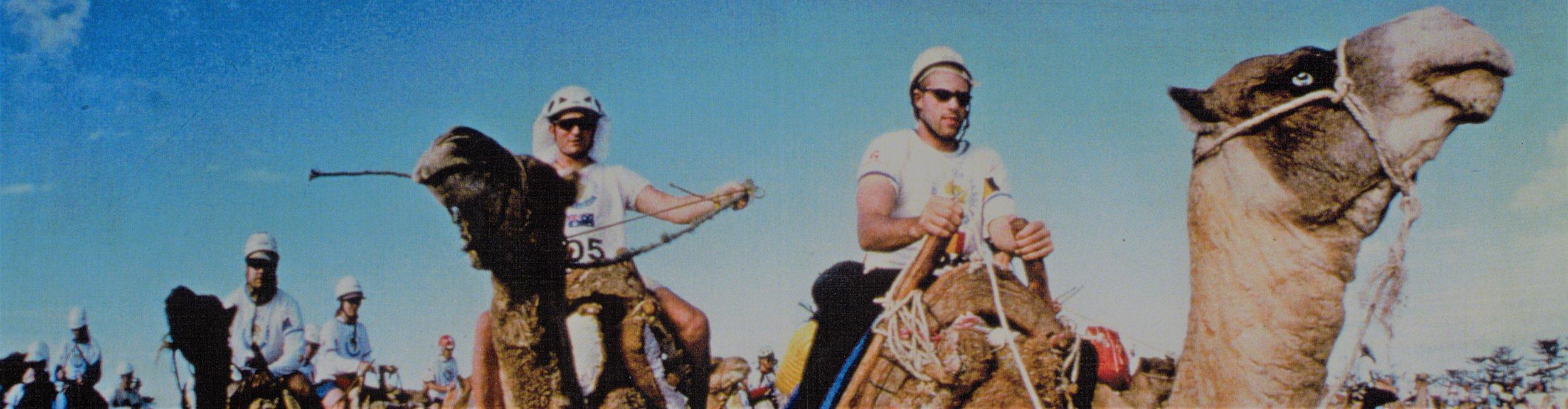 camels, Eco-Challenge 1998, Morocco