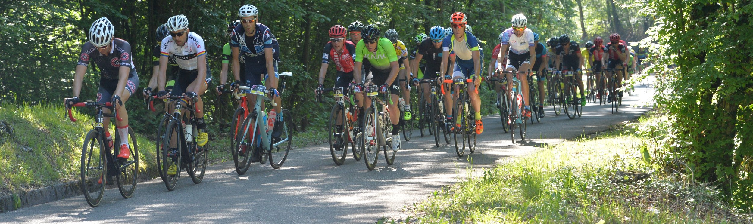 a peloton of riders in the Giro d'Italia