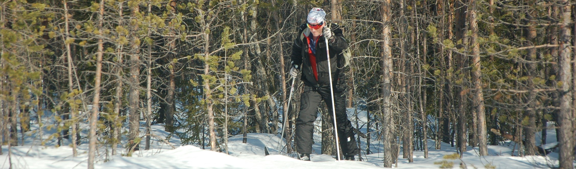 A skier emerges from the Finnish forest