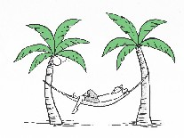 Man in a Palm Tree.jpg
