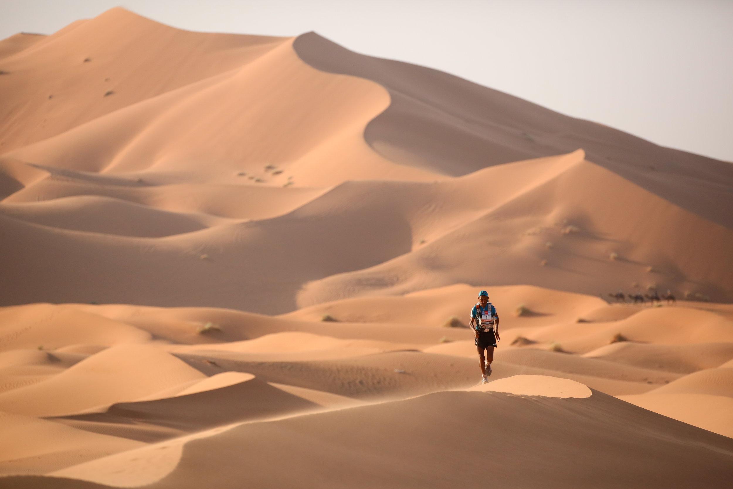 Image: Erik Sampers / Marathon des Sables
