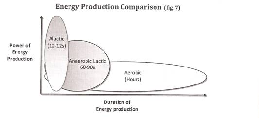 energypathways.jpeg
