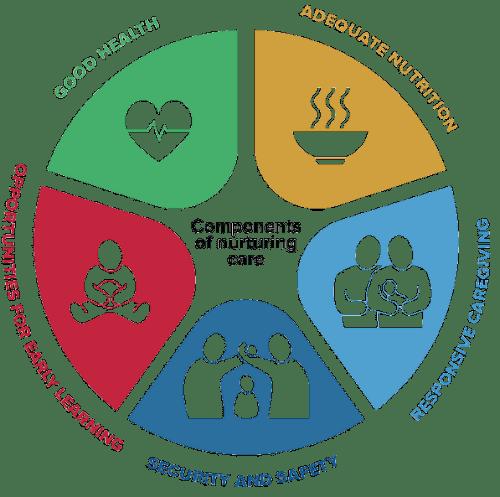 Naturing Care Framework Components.png