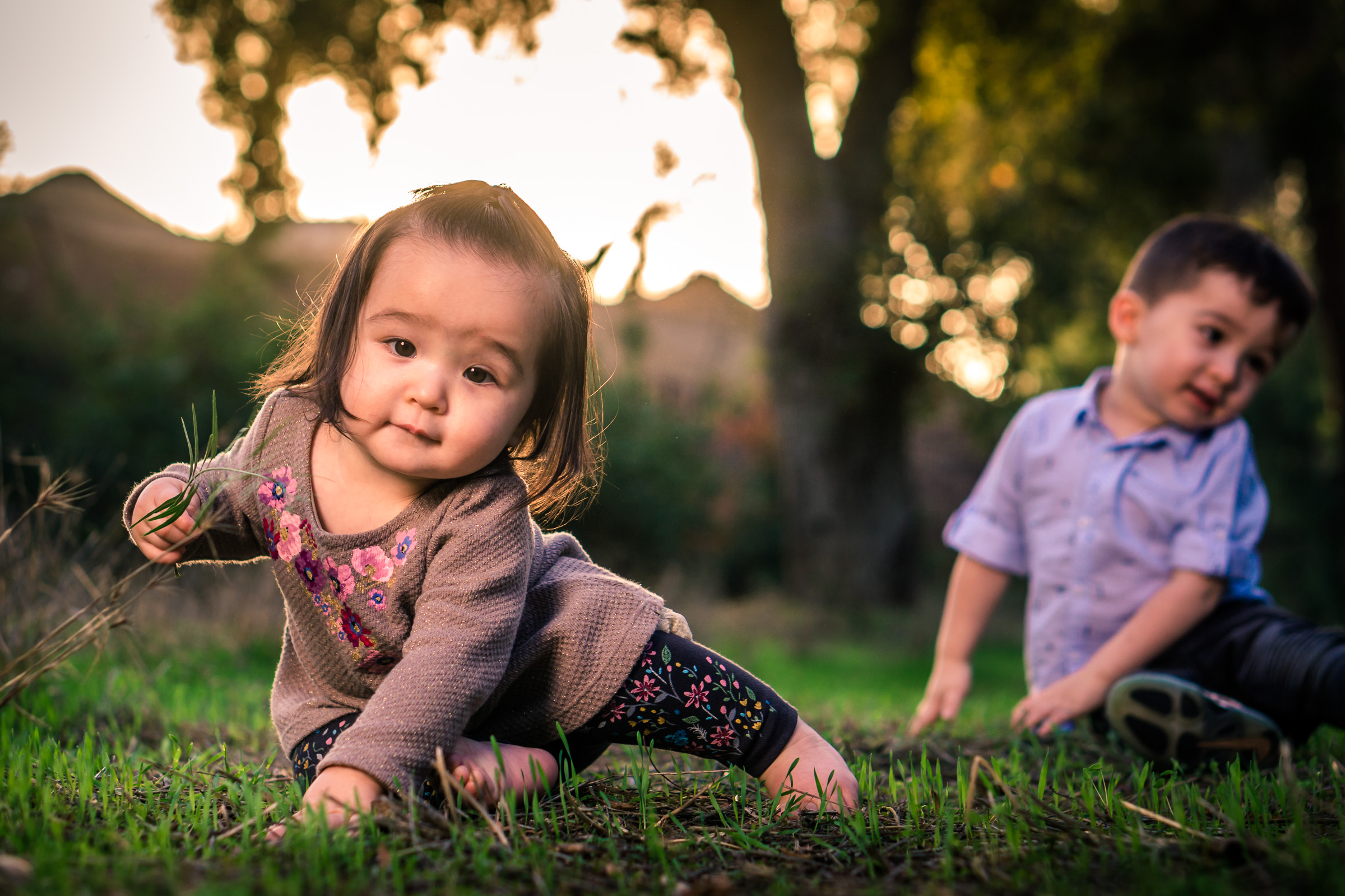 Portrait of a cute Little baby girl playing in the grass on the Juanita Cooke Trail in Fullerton during a family portrait session