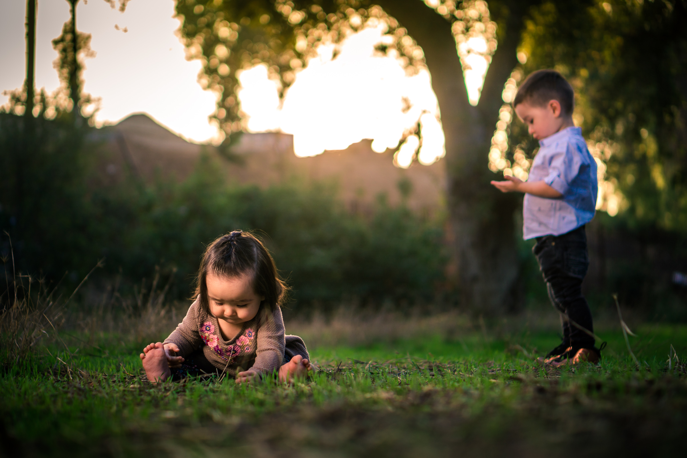 Portrait of a cute Little baby girl  playing in the grass with her brother on the Juanita Cooke Trail in Fullerton during a family portrait session