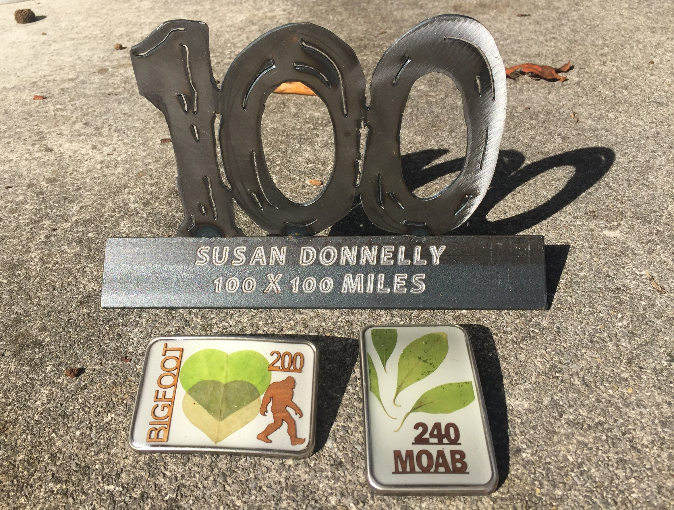 How Susan Donnelly balances life and training to finishing 100 100-mile and two 200-mile ultramarathons