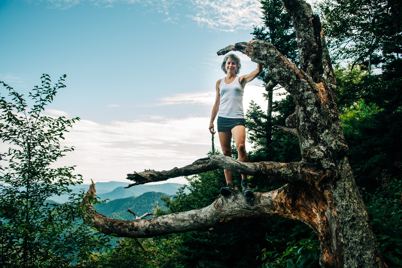 Susan Donnelly out of her comfort zone in a tree