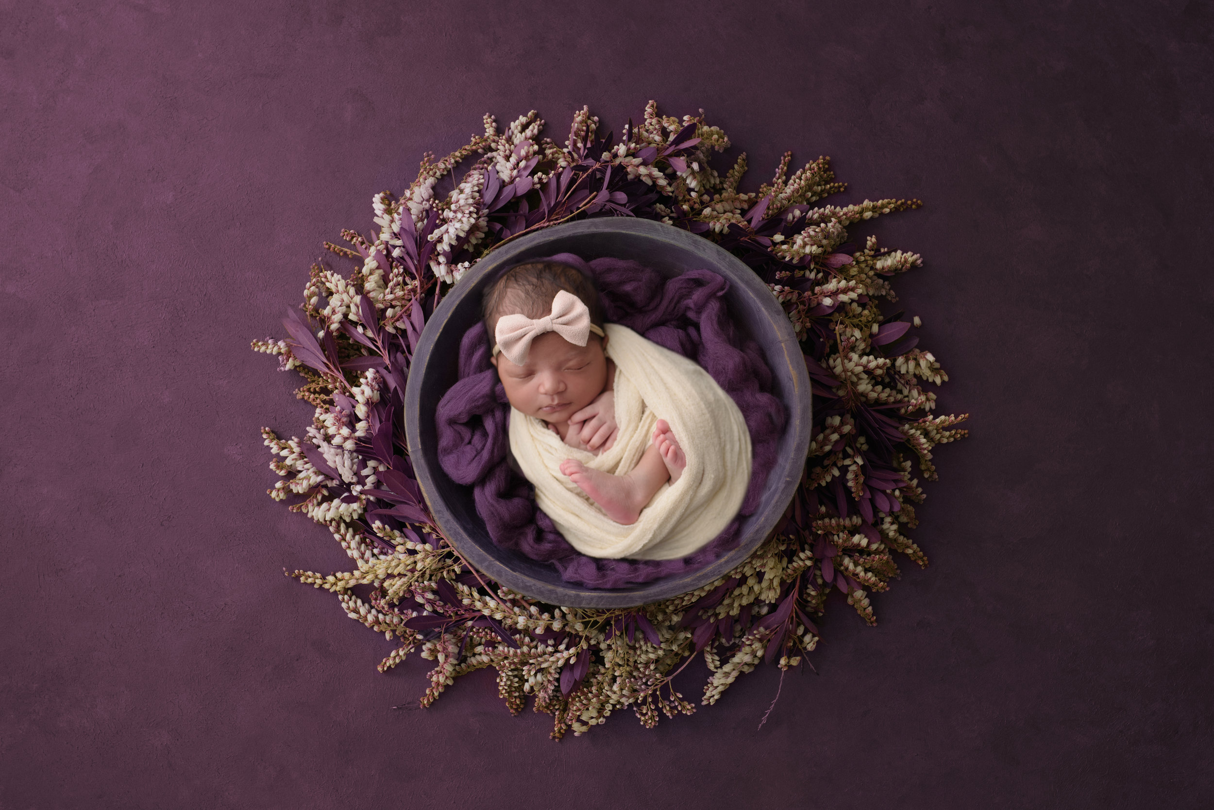 Heather Dimsdale newborn photographer poses baby girl with deep purple and cream props.