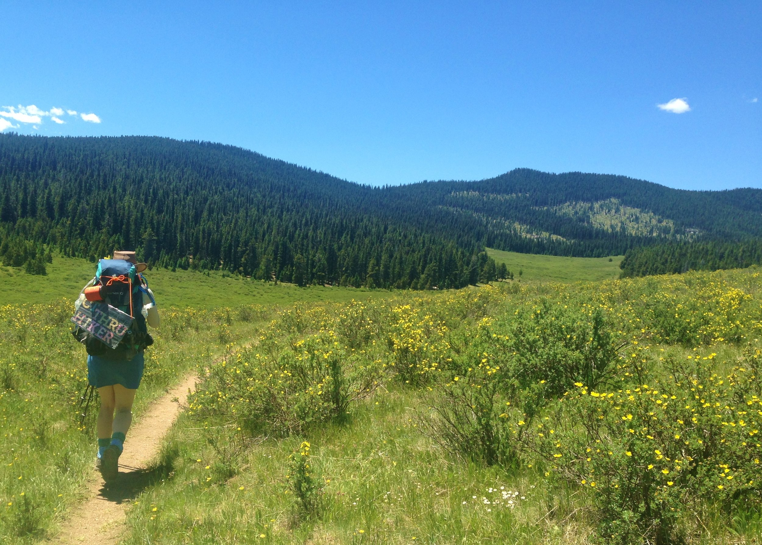 Day 5:  My family went home and I was on my own again. I hiked through Lost Creek Wilderness, past Brookside-McCurdy Trail, and along six mellow miles of meadow (seen here with a fellow thru-hiker) toward Long Gulch Trailhead.  Daily mileage: 16.9. Total miles: 57.1.