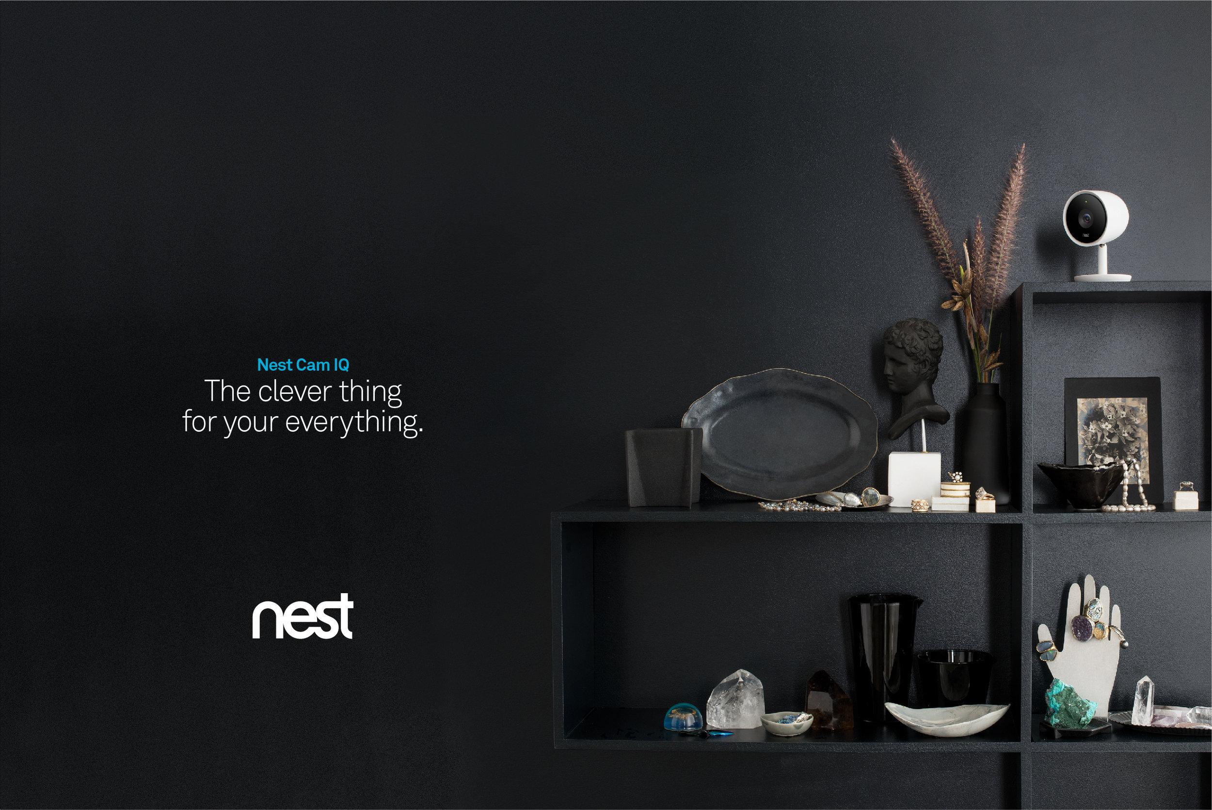 NestCamIQ_6.jpg