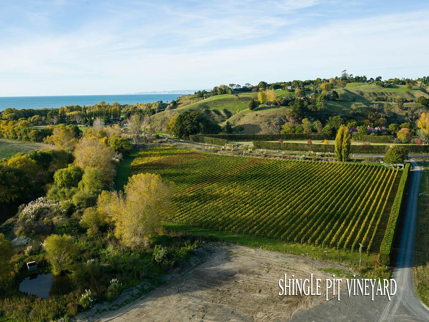 Crab Farm Winery Shingle Pit Vineyard